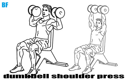 Seated Dumbbell Shoulder Press (Oturarak Dambıl Omuz Pres)