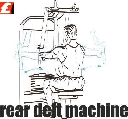Rear Deltoid Machine Arka Omuz Hareketi