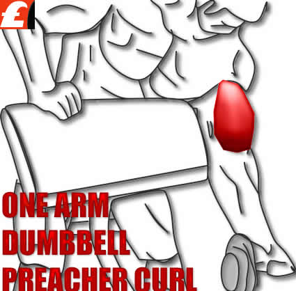 One Arm Dumbbell Preacher Curl - Biceps Egzersizi